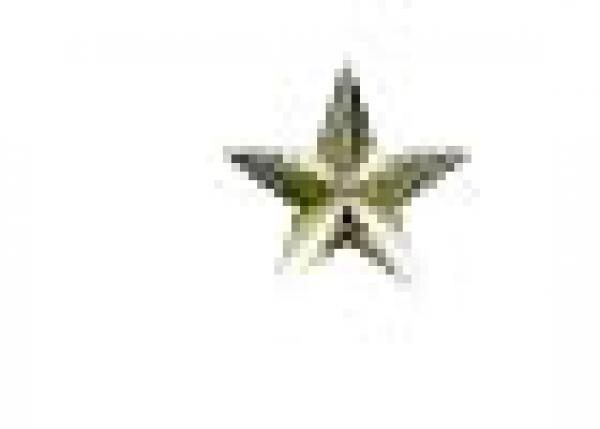 Star 10 mm Bronze HotFix Nailheads