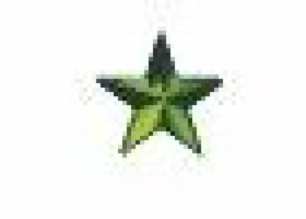 Star 13 mm Dk Green HotFix Nailheads