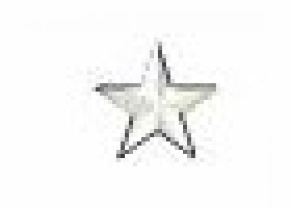 Star 13 mm White HotFix Nailheads